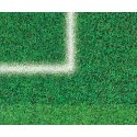 Automaten Hoffmann Kicker-Turnierspielfeld mit Stadionrasenoptik